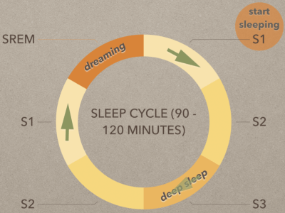 Riding the Sleep Cycle